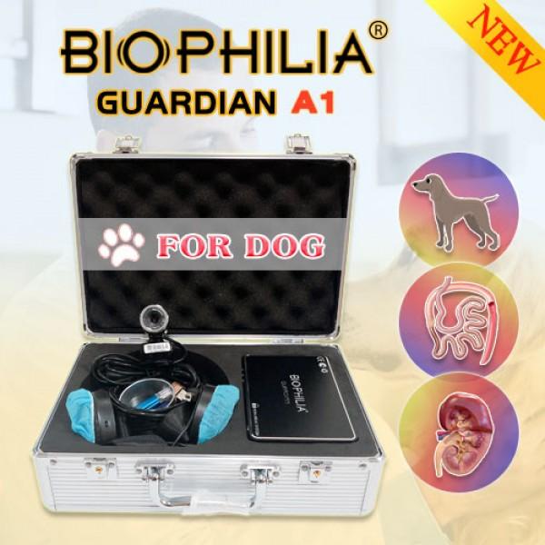 Biophilia Guardian Bioresonance Machine